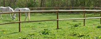 Valla Tejana de Madera para Caballos en Alta Ribagorça