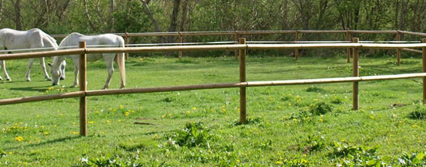 Valla tejana de Madera para Caballos en Alta Rigagorça
